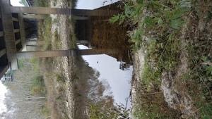Across, 12:40:52,, Below the downstream bridge 30.7900038, -83.4585197