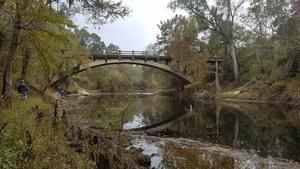 Reflection and far shore, 13:22:41,, Spook Bridge 30.7905873, -83.4518152