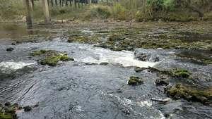 Movie: Waterfall, 14:15:00, (7.6M), Upstream of US 84 30.7897414, -83.4554755
