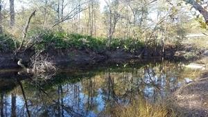 Upstream, River bank