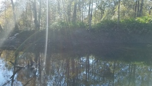 Across, River bank