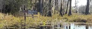 Closeup on signs to Minnie Lake, Billies Island, 10:29:31,, Suwannee River 30.8349250, -82.3431708