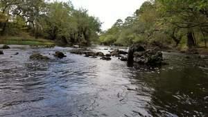 Movie: Through the eddies, 16:32:34,, River Bend Shoals 30.6673500, -83.3866900