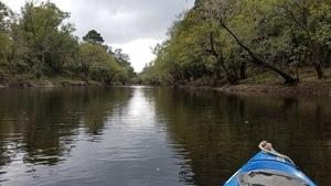 Paddlers ahead, 11:51:44,, Clyatt Mill Creek 30.6526587, -83.3613652