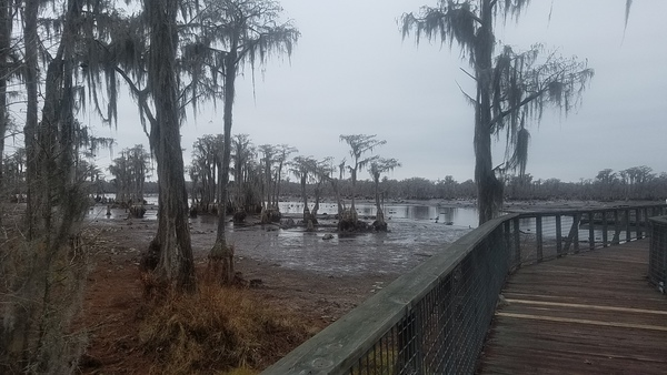 Water could be higher, Boardwalk