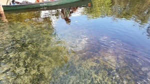 Green canoe, green water, 15:16:26,, Arnold Springs 30.6410533, -83.3366343