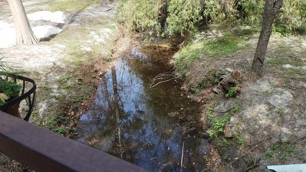 Upstream, Footbridge