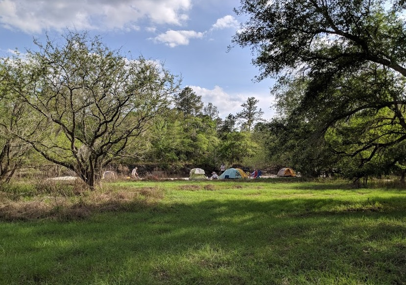 829x582 Paddling the Alapaha, Pictures, in Canoeing the Alapaha, April 2018, by Robert Marshall, for WWALS.net, 12 April 2018