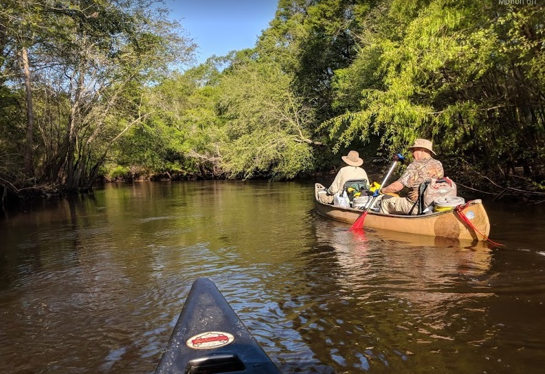 793x544 Second camp: a sandbar with a meadow in back of it, Pictures, in Canoeing the Alapaha, April 2018, by Robert Marshall, for WWALS.net, 12 April 2018