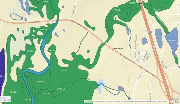 Little River Confluence, Troupville, GA, Detail