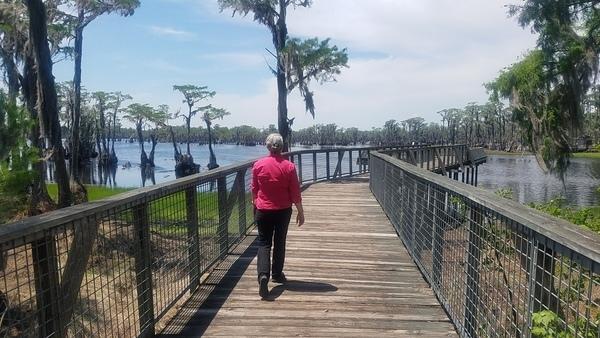 Lake has some water, Boardwalk