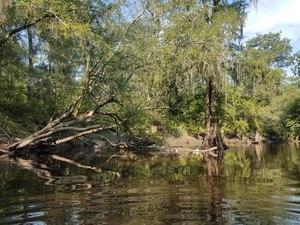Trash, River