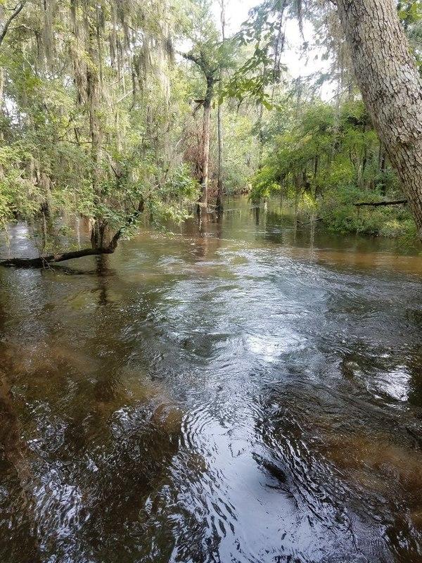 Current, River