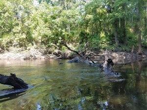 Submerged deadfall, Downstream
