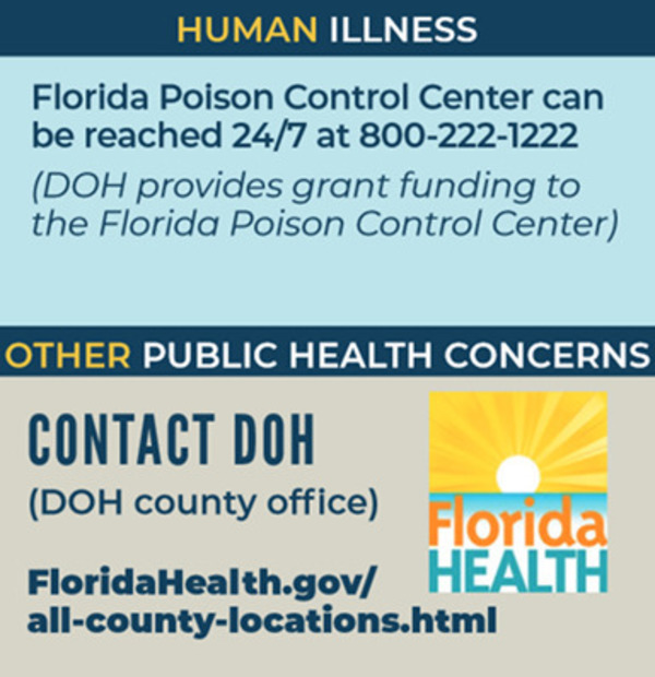 DOH (Public Health), Contact: